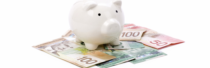 Debt Consolidation Settlement Piggy Bank Image - Credit Management Services